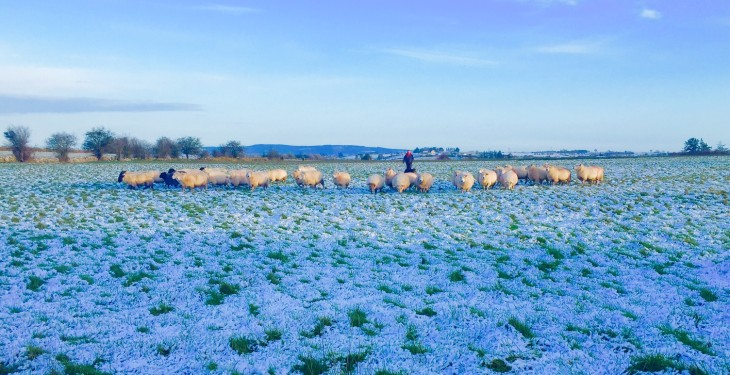 Here's how to be 'winter-ready' on the farm