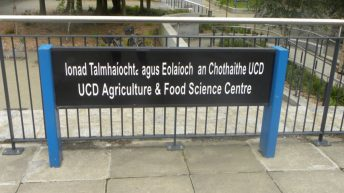 UCD's immature farmers rigging adult for 'Ag Week'