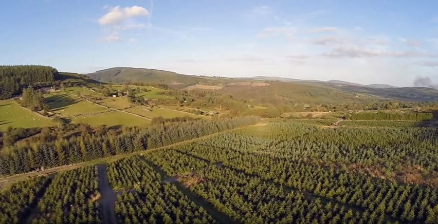 Video: Great footage of the view over a Christmas tree farm