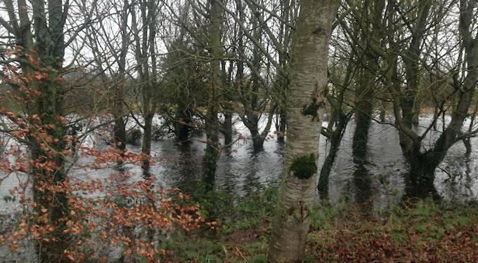 Department fails to reclaim €25,000 from flood-hit farmer