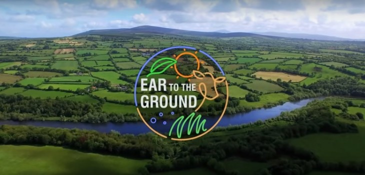 The Dublin-Galway Greenway and TB feature on Ear to the Ground