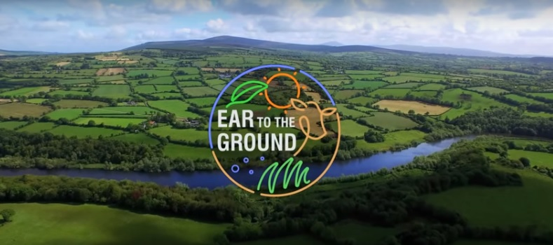 Video: FBD Young Farmer of the Year features on Ear to the Ground