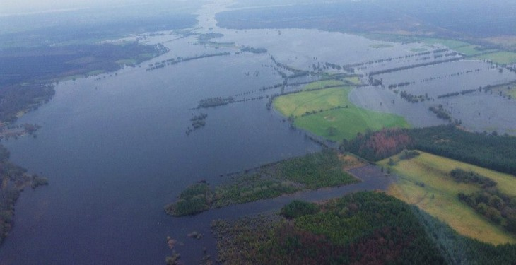 Floods create fodder crisis for farmers west of the Shannon – Teagasc