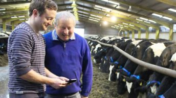 One of Ireland's largest dairy farms fits Dairymaster's MooMonitor system