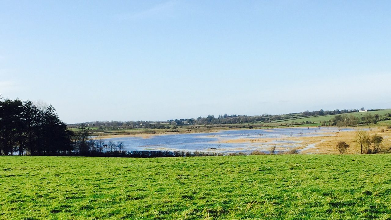 Department to provide more assistance to farmers hit by flooding