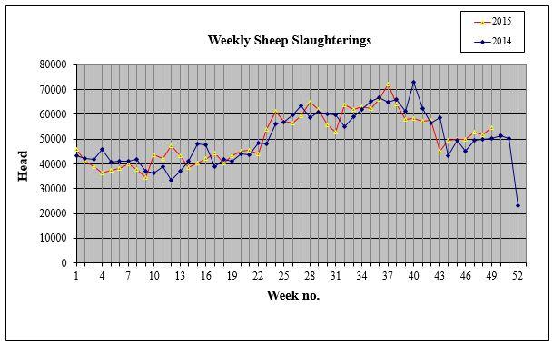 weekly sheep kill
