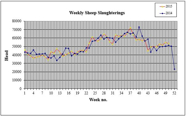 weekly sheep slaughterings