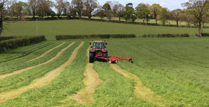 Northern Ireland farmer wins Yara Grass Prix competiton