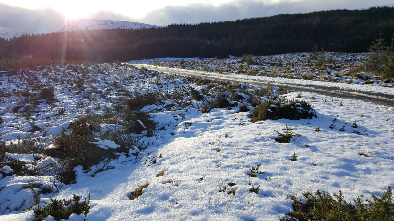 Lows of -6 and more snow on the way as weather warnings extended
