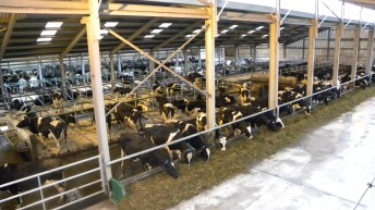 Inside the €2.3m UCD dairy research farm at Lyons