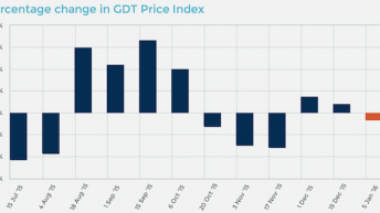 Global Dairy Trade records drop in first auction of the New Year
