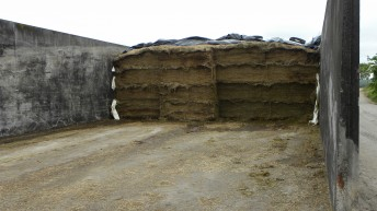 Now that I'm feeding silage, how do I minimise waste?