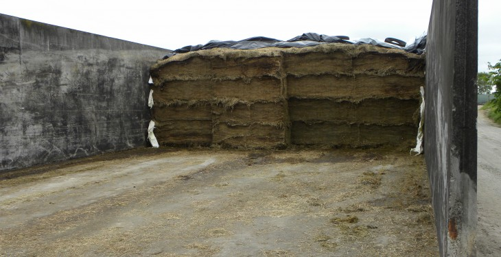 How much is left in your silage pit and how long will it last?