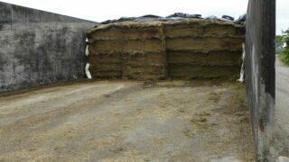 9月要做的事情:挑选品种,饲料预算和牧草