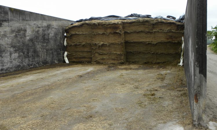 Farmers urged to attend Cork fodder shortage meeting