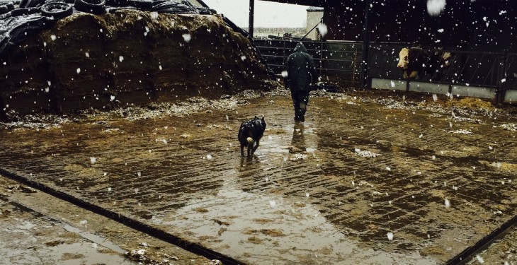 A cold weekend in store with wintry showers – Met Eireann