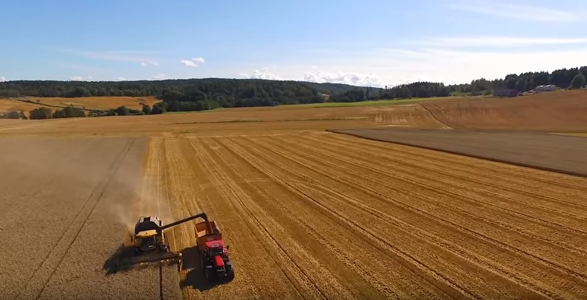 Video: Great footage of the wheat harvest in Norway last year