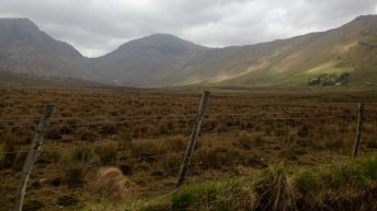 'Controlled burning is an essential part of upland management'