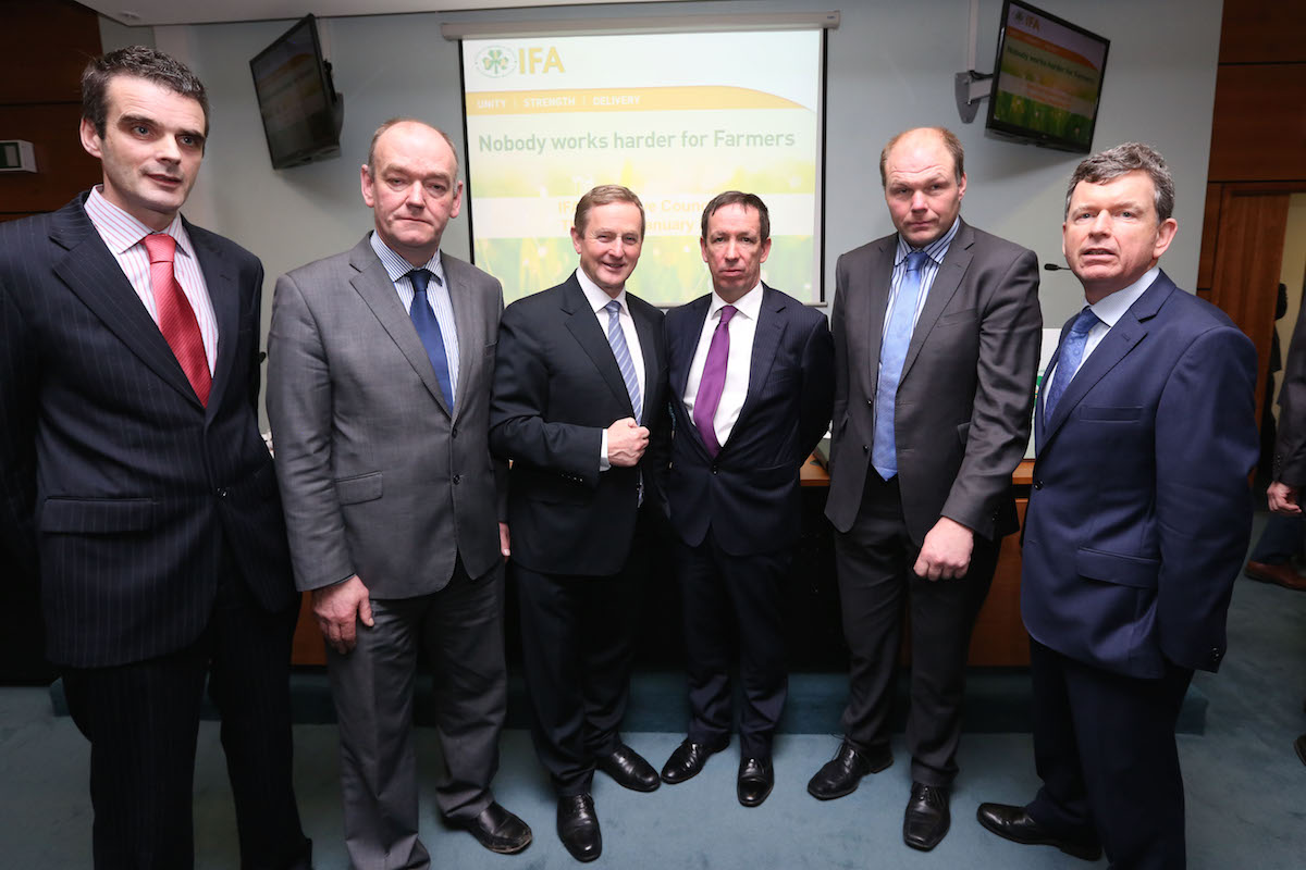 IFA Elections