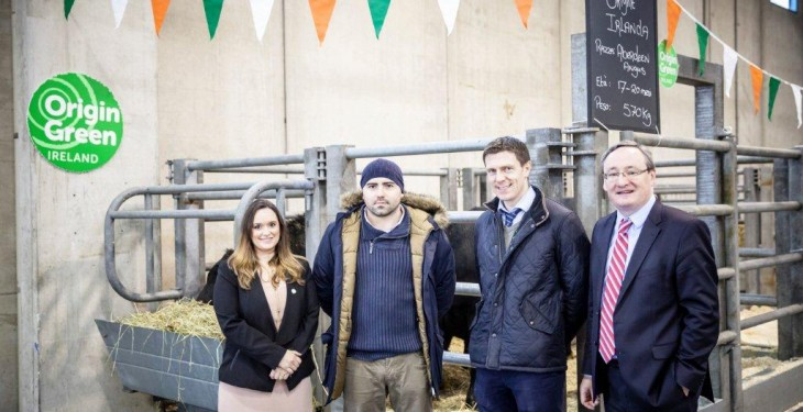 Bord Bia promotes live cattle exports at Italy's premier Livestock Fair