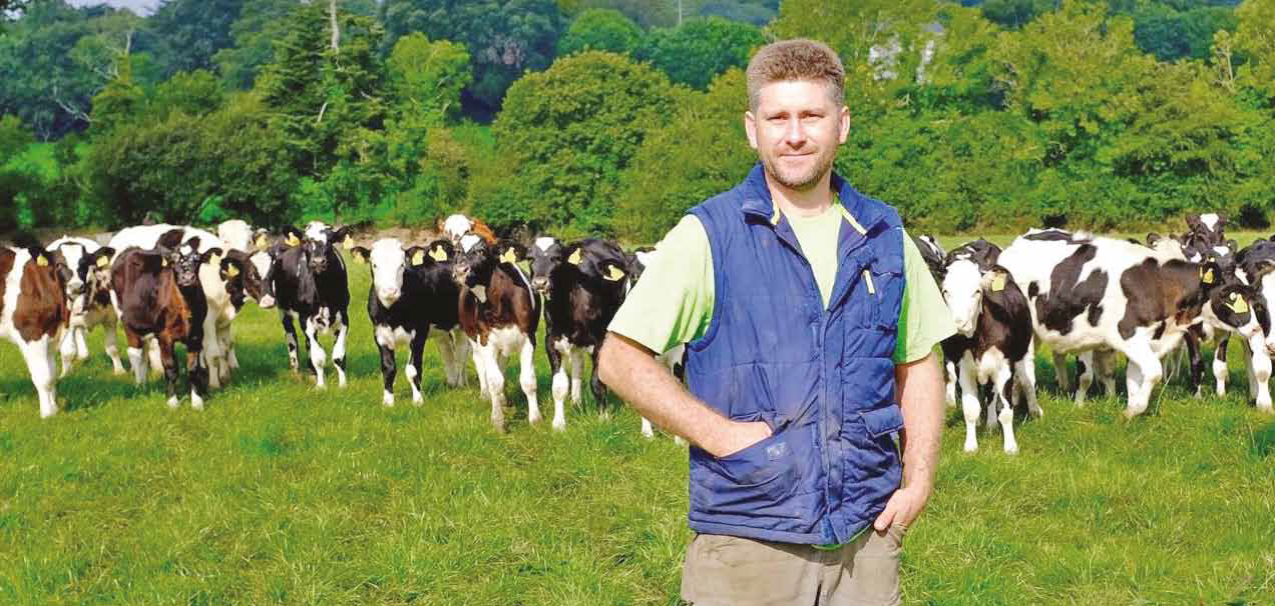 Vaccinating calves against pneumonia a critical practice on Wicklow dairy farm