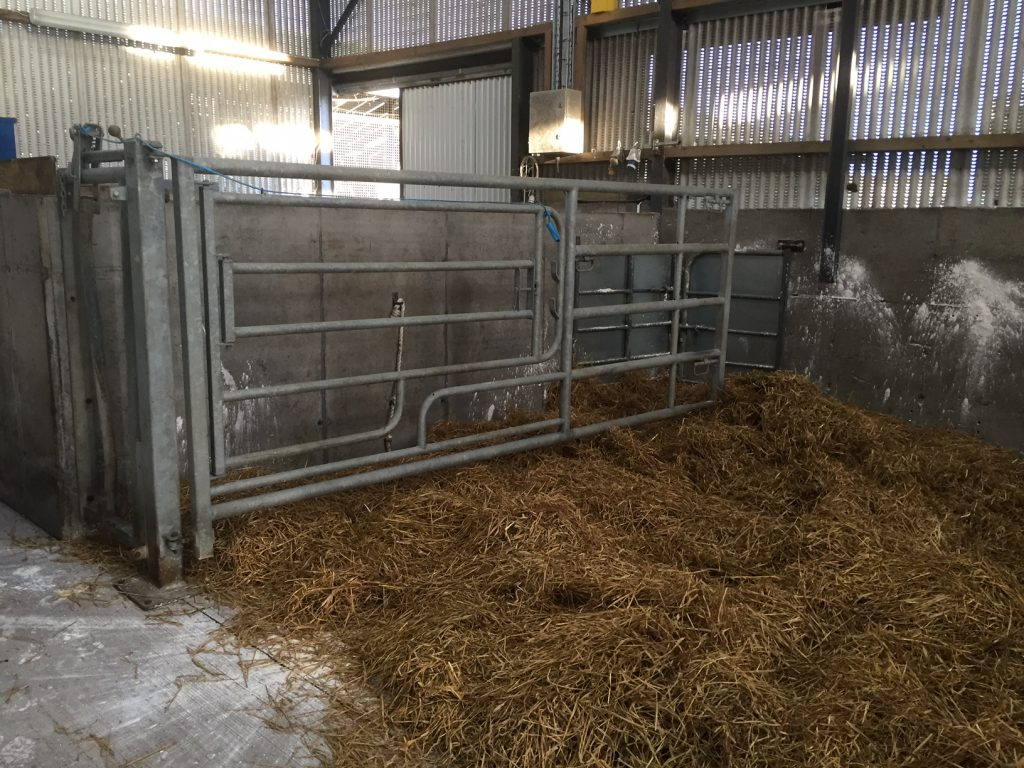 Pics Take A Look At The 100 000 Calving Facilities At