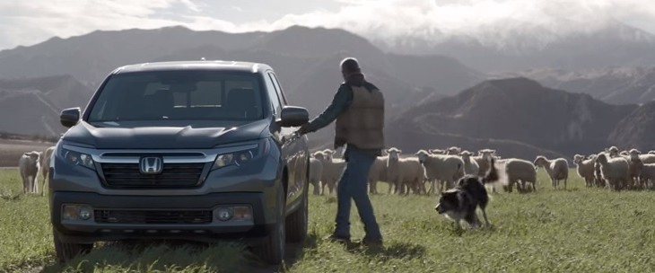 Video: Sheep take to the field for Honda's Superbowl 50 ad