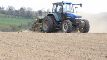 Seed selling out as winter barley returns to peak levels