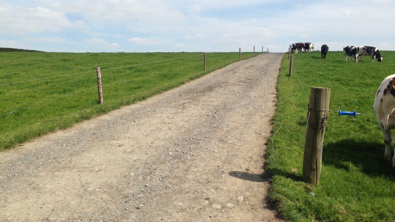 Scottish government creates 'starter farms' for new entrants