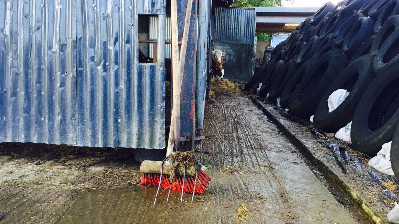 CAP: Current proposals will 'cost farmers millions'