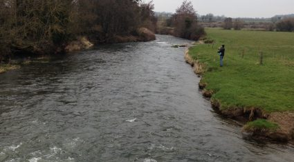 Slurry identified as the cause of a fish kill in Kerry