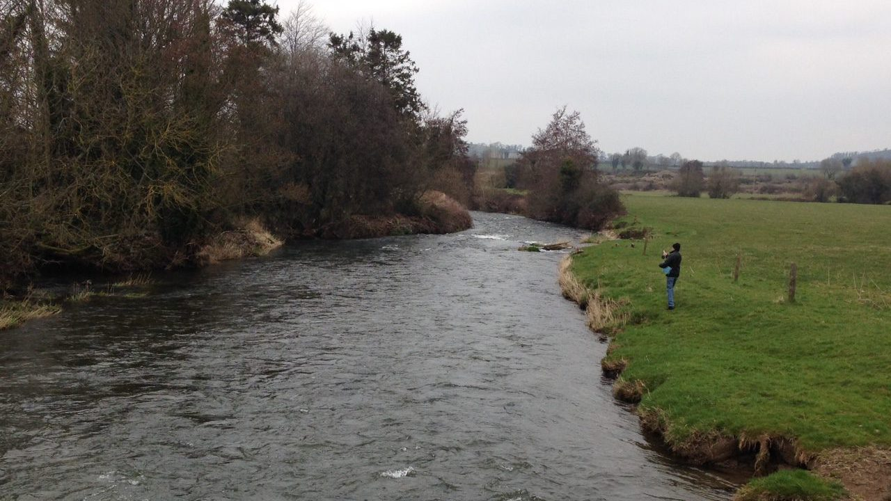 Investigations launched after farmed salmon discovered in river