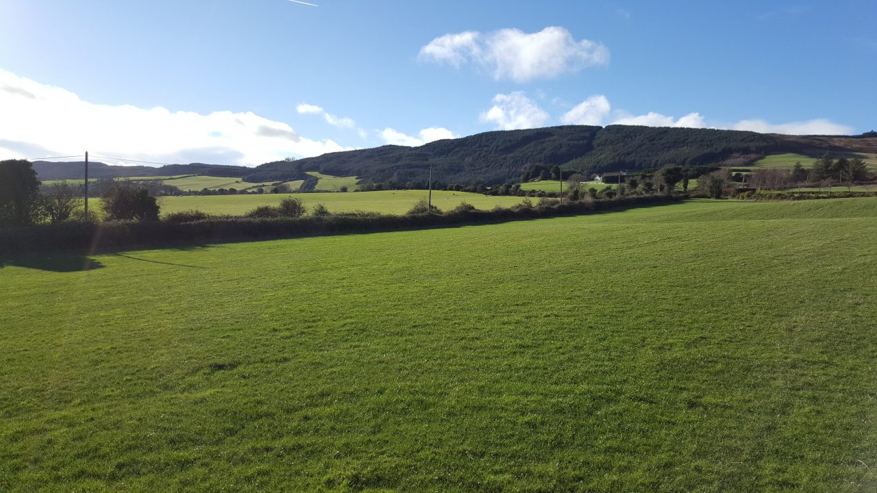 Land prices fell across all categories in Munster in 2016