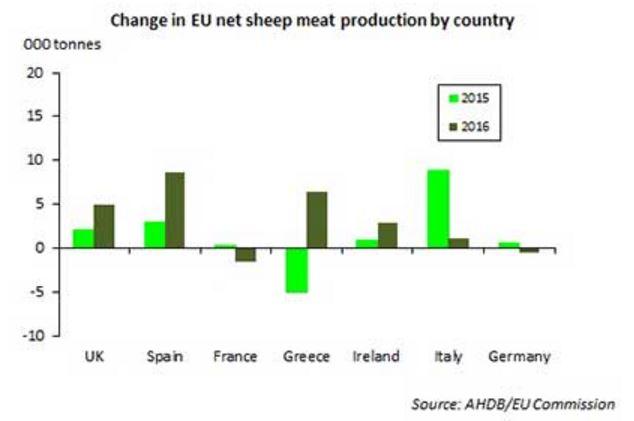 AHDB sheep supplies