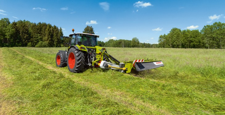 Should I graze or mow my second-cut silage paddocks?
