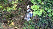 1 in 5 litter louts admit to leaving waste in the countryside in last 3 months