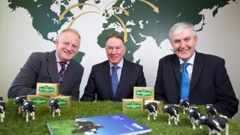 Ornua 'hoping' for a milk price recovery in early 2017