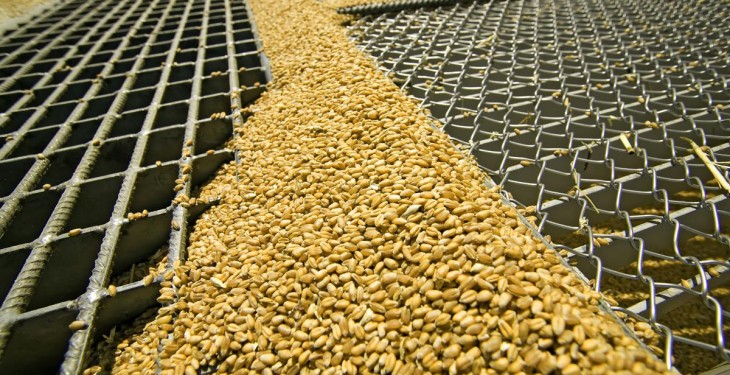 Grain price: Protests lifted at home; WASDE released in US