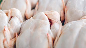 Irish chicken processor to be purchased by Swedish firm for €70 million