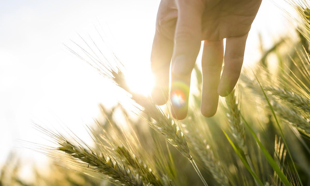 23% of skin cancer deaths from outdoor and farming sectors