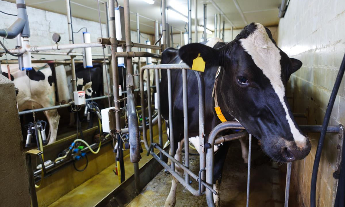 Arrabawn Co-op cuts May milk price (but uses support to bump up price)