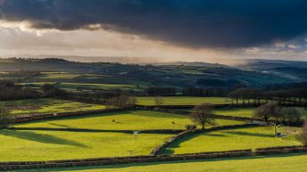 What is the price of farmland in 2019?