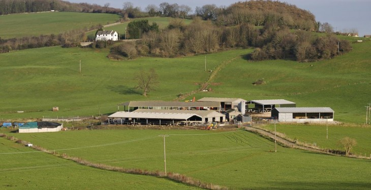 20% of farmers in GLAS 1 yet to receive first payment