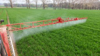 'Failing to manage disease in spring barley could lead to a 10-30% yield loss'