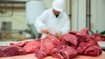 Minister claims progress on Irish access to Chinese beef market