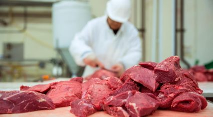MEPs to vote on new rules to prevent future horsemeat scandal