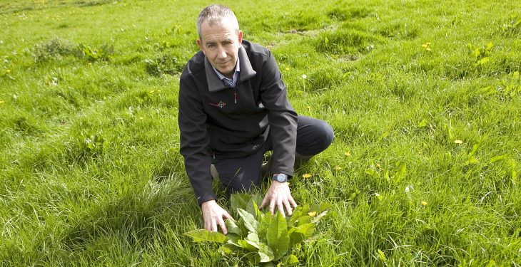 Will contractor spraying become the 'norm' within grassland sector?