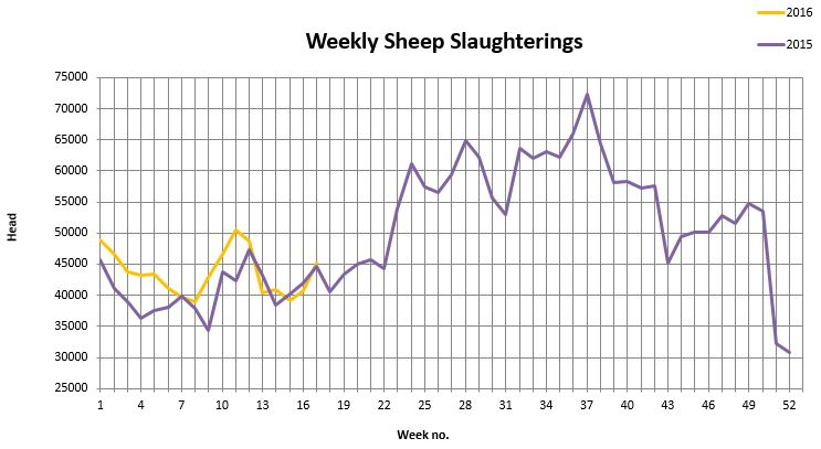 Sheep kill week 17