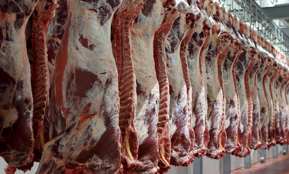 'Farmers not convinced there is adequate price competition in beef sector'