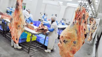 Over 1,000 employees in German meat plant test positive for Covid-19